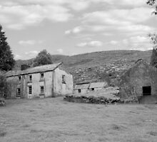 rundown abandoned Irish farmhouse by morrbyte