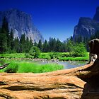 Captain of Yosemite by Kozmo