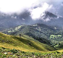 Italian Alps by hilarydougill