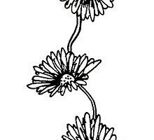 Flower Vine by maisie-jane-