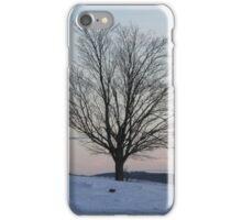 Winter's harsh loneliness iPhone Case/Skin