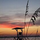 Rainbow Sunset through Sea Oats by nauticalelf
