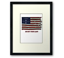 Illuminati flag Framed Print