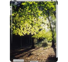 Spring Trees iPad Case/Skin
