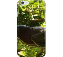hunting bird - pájaro cazando iPhone Case/Skin