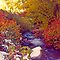 Stream in Autumn - 1  (Mill Creek Canyon, Utah)  by SteveOhlsen