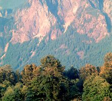 Distant Cattle Grazing Beneath Cascade Mountains (2) by SteveOhlsen