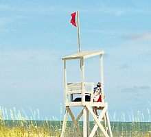 Lifeguard Duty by Cynthia48