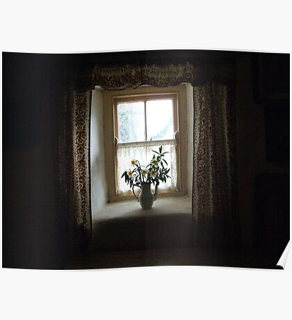 Dark cottage window Poster