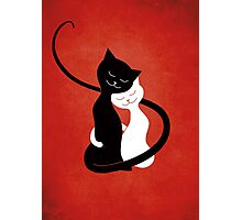 Red White And Black Cats In Love Photographic Print