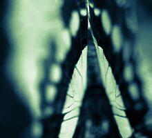 Wings by aesthetic221