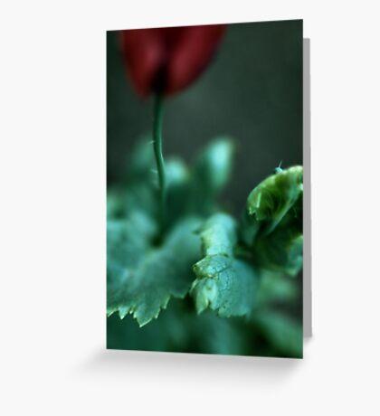 Opium Greeting Card