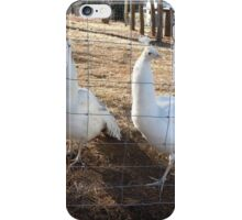 All animals allowed! iPhone Case/Skin