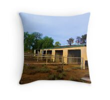 worked Throw Pillow