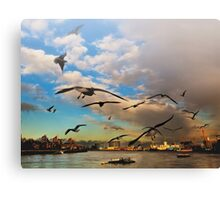Birds of London Canvas Print