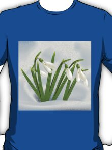 Snowdrops in snow T-Shirt