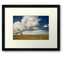 Lonely in the field Framed Print