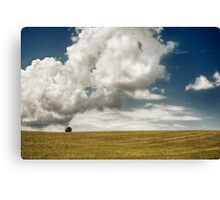Lonely in the field Canvas Print