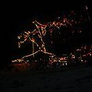 Light tree by Thomas Clark