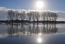 Icy reflection on the river Rhine by Javimage