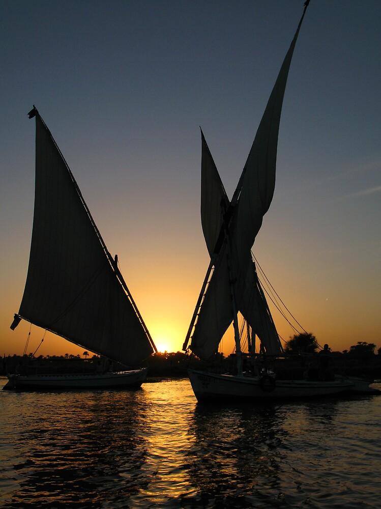 Sunset on Nile by Mikhail Palinchak