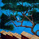 Tree over Capri Sea by Carole Russell