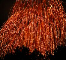 Fireworks - Weeping Willow by Paul Gitto