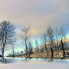 Winter Beauty ! by Elfriede Fulda