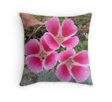 three quarters Throw Pillow