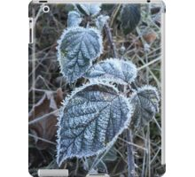 Frosty leaf in winter  iPad Case/Skin