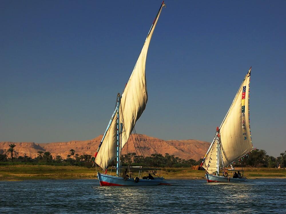 Fishing on Nile by Mikhail Palinchak