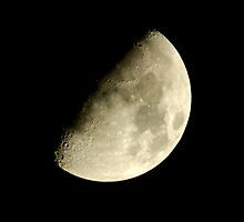 First Quarter Moon by Paul Gitto