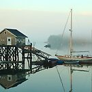 Foggy morning and lobsterman's shack by fauselr
