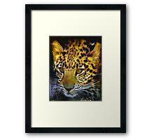 East African leopard Framed Print