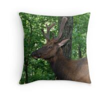 Bull Elk Portrait Throw Pillow