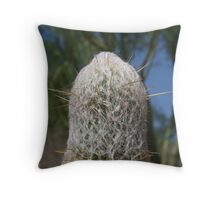 So cute and fuzzy.........ouch!!! Throw Pillow