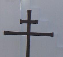 Double Cross by Martina Nicolls