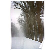Foggy Morning Landscape (5) Poster