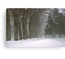 Foggy Morning Landscape (6) Canvas Print