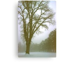 Foggy Morning Winter Landscape (9) Canvas Print
