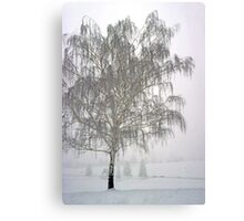 Foggy Morning Landscape (11) Canvas Print