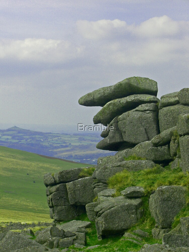 The Old Man of the Moor by Bramble