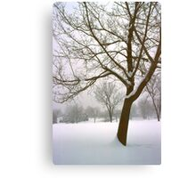 Foggy Morning Landscape (14) Canvas Print