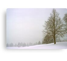 Foggy Morning Landscape (18) Canvas Print