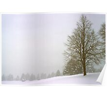 Foggy Morning Landscape (18) Poster