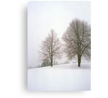 Foggy Morning Landscape (19) Canvas Print
