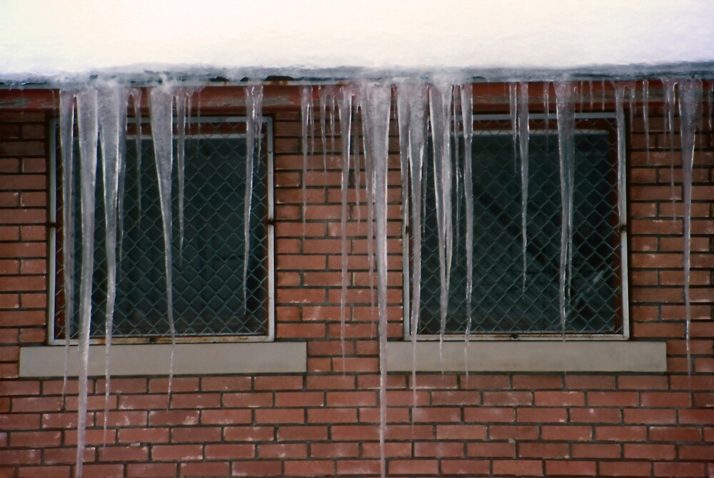 Icicles (2) - In Front of Windows Off Red Brick Bldg. by SteveOhlsen