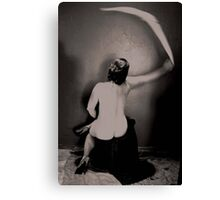 Yet Another Swish is Heard Canvas Print