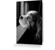 Where Are You  Greeting Card