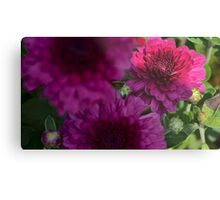 purple flower low key  Metal Print